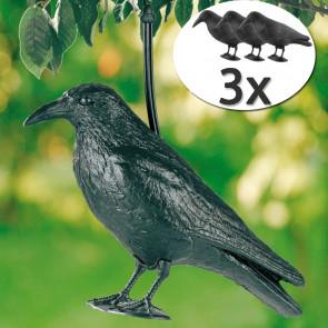 TFY Havran Maketa na plašenie drobného vtáctva, plast, 3 ks